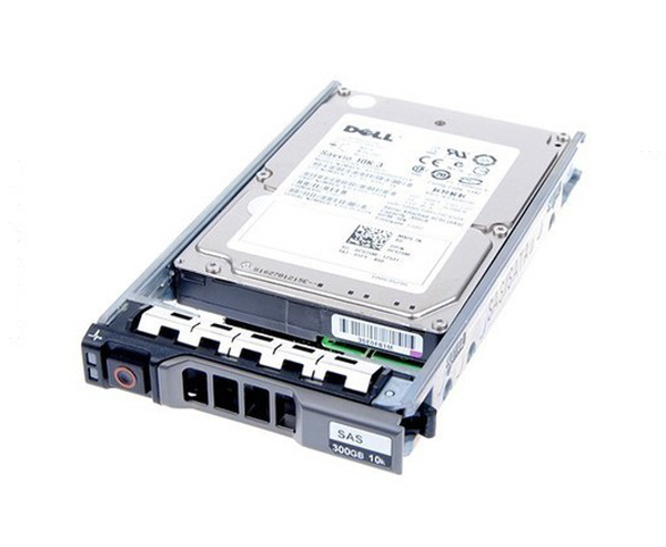 300GB 15K RPM SAS 12Gbps 2.5in Hot-plug Hard Drive, 3.5in HYB CARR
